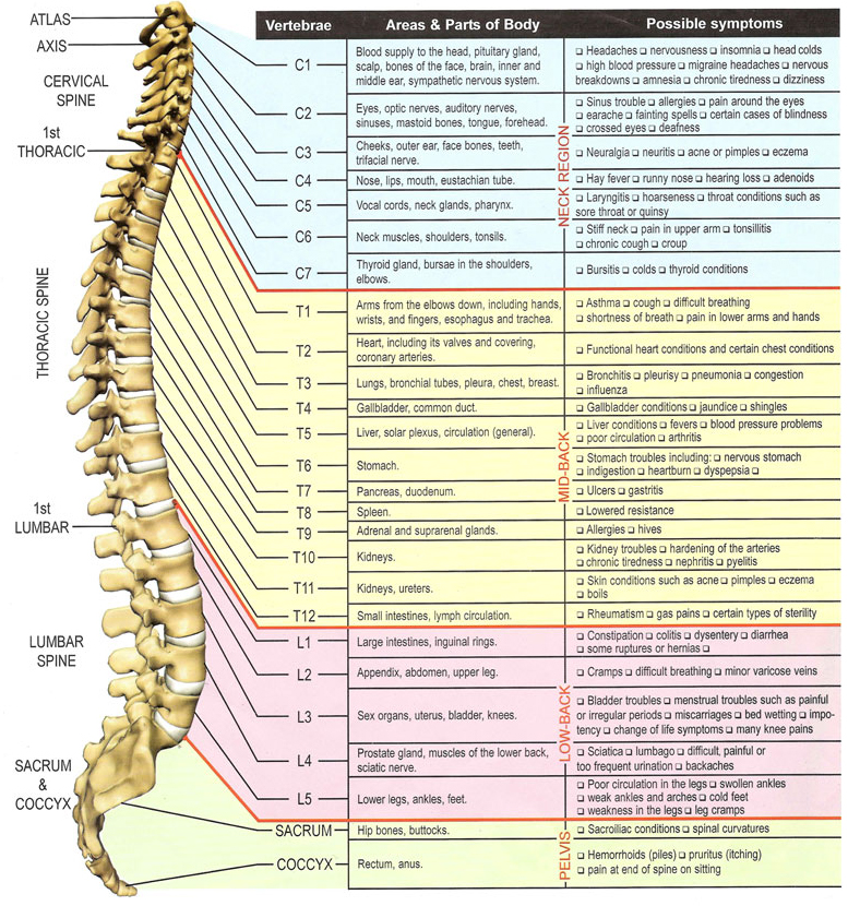 Why Choose Us Optimal Spine Chiropractic